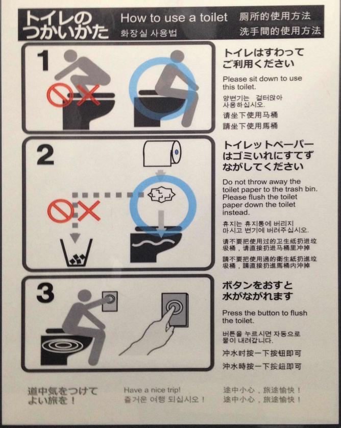 foto di un cartello che spiega come usare un water