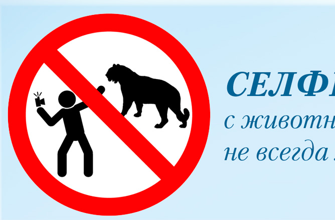 Pittogramma campagna selfie sicuro Ministero Interni Russo