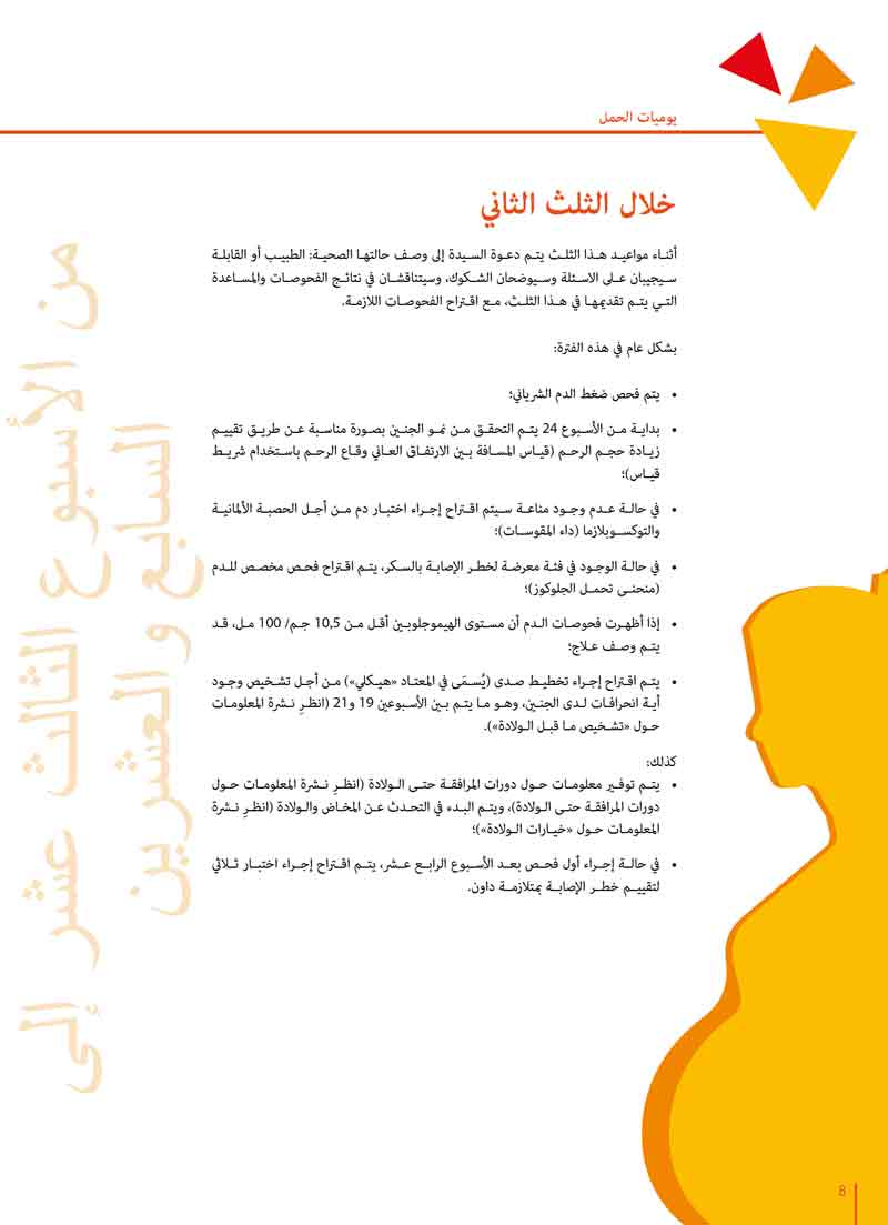 pagina da una brochure in arabo